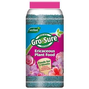 Westland Gro-Sure Ericaceous Slow Release Plant Food 900 grams