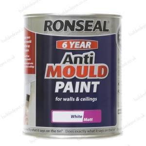 Ronseal 6 Year Anti Mould Paint Matt White 750ml