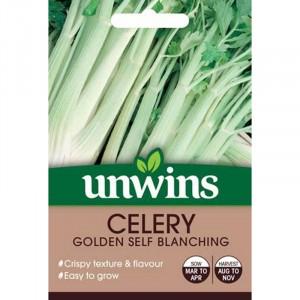 Unwins Celery Golden Self Blanching