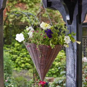 "Smart Garden 14"" Chestnut Hanging Cone"