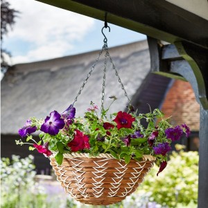 "Smart Garden 14"" Country Braid Hanging Basket"