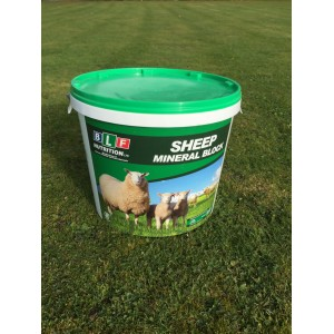 BLF Sheep Mineral Block 20kg - Green