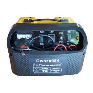 Gwaza Battery Charger Dual Voltage 12/24V 30A