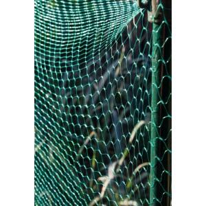 Ambassador Garden Net Green